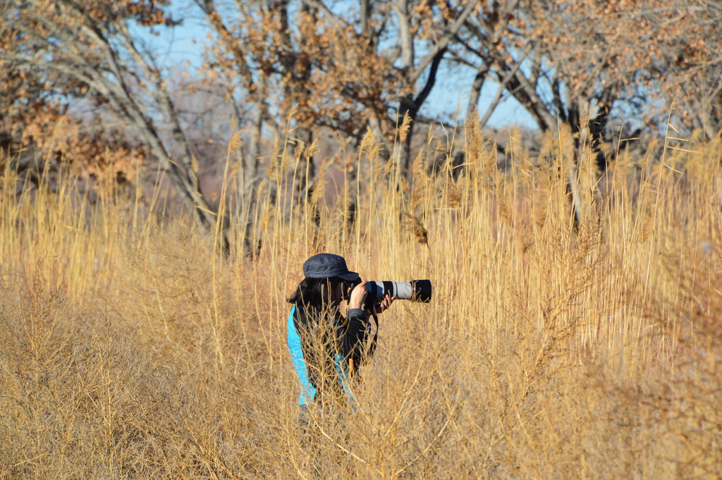 Photographer In The Bush by bigdad