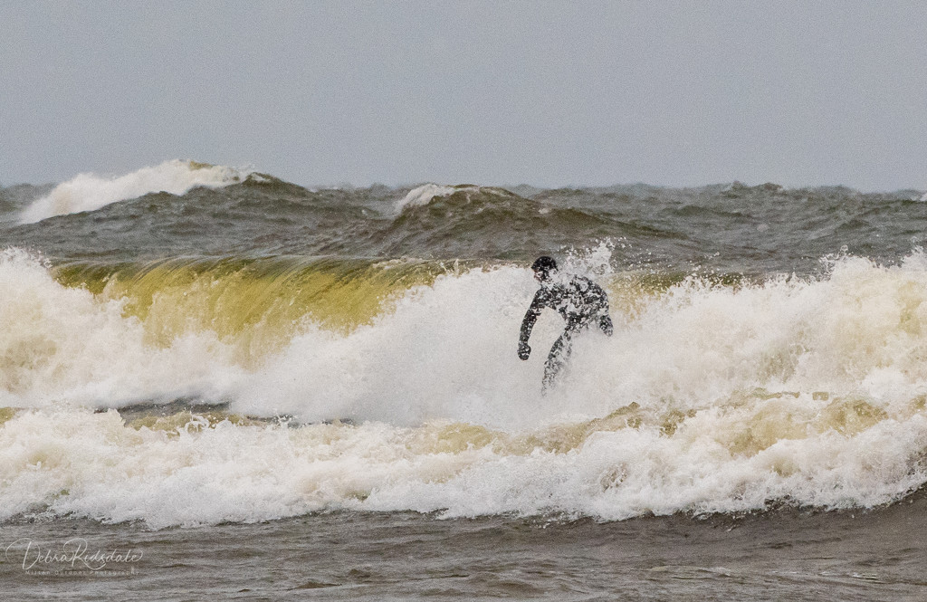 Winter Surfing ~ Lake Michigan  by dridsdale