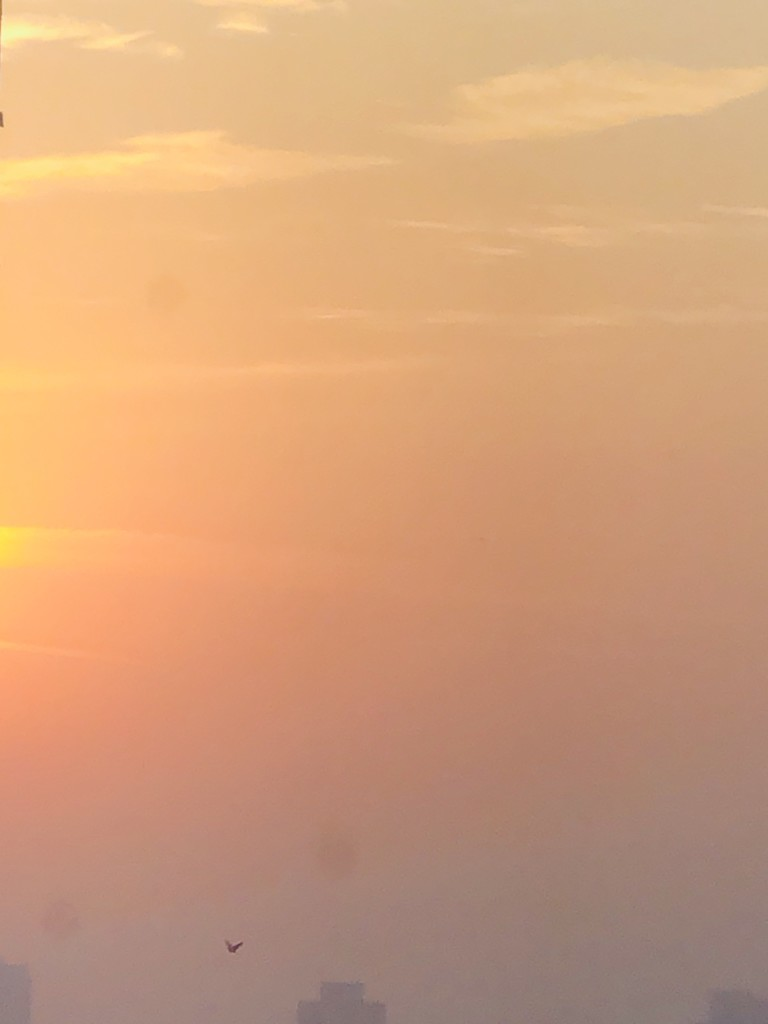 Eastern sky over the skyline by veengupta