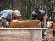 11th Jan 2019 - Jerome & Michel, woodcutting