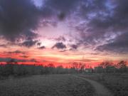 11th Jan 2019 - sunset