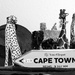 How far to Cape Town?