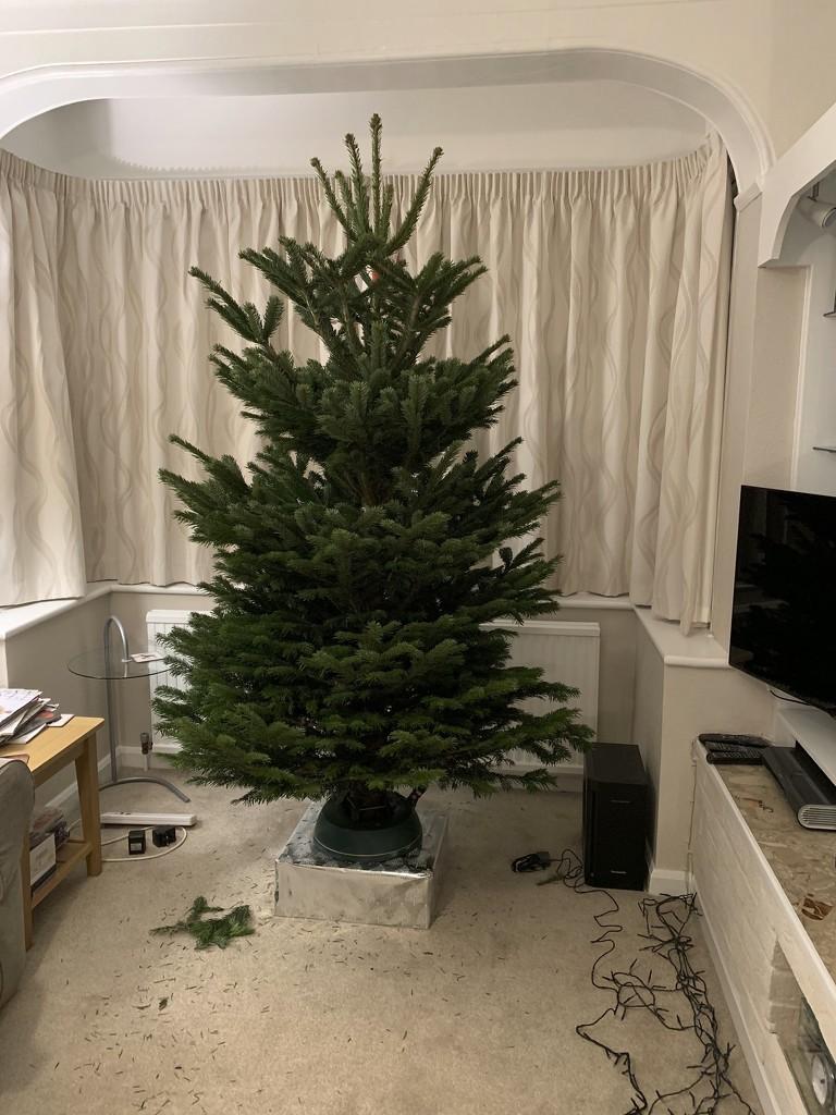 11th December 2018 by emmadurnford
