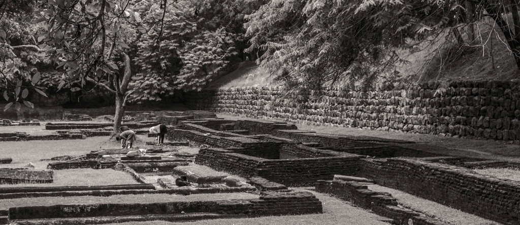 Gardeners in the concubines' baths by golftragic