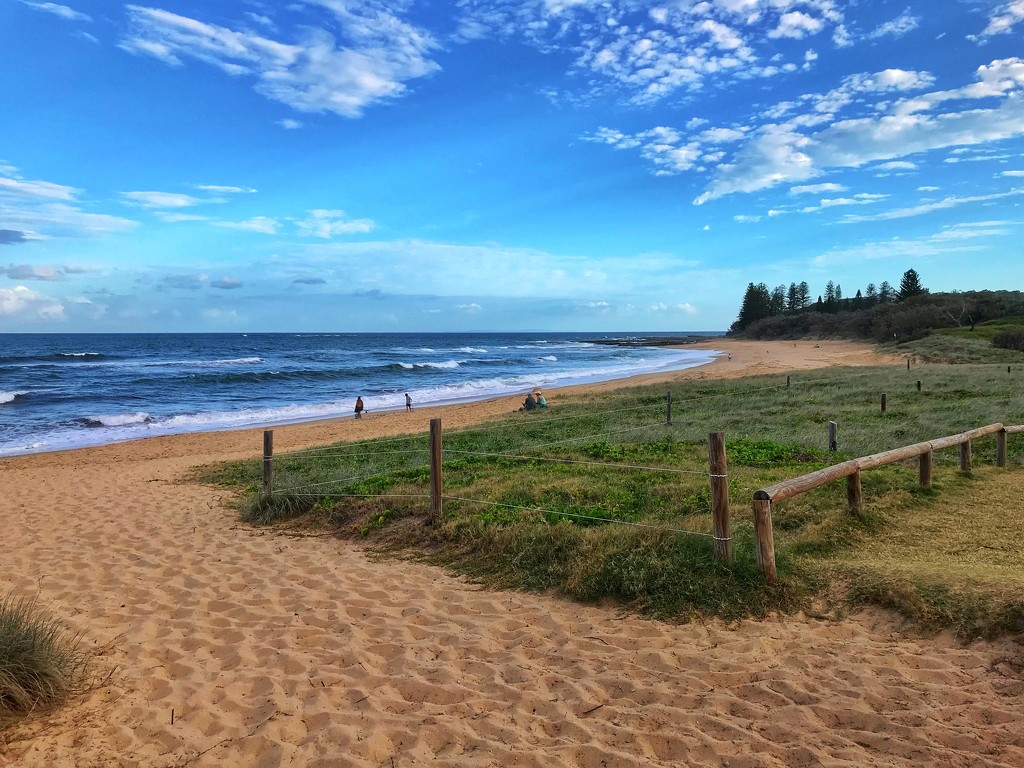 Walking towards Shelly Beach by corymbia