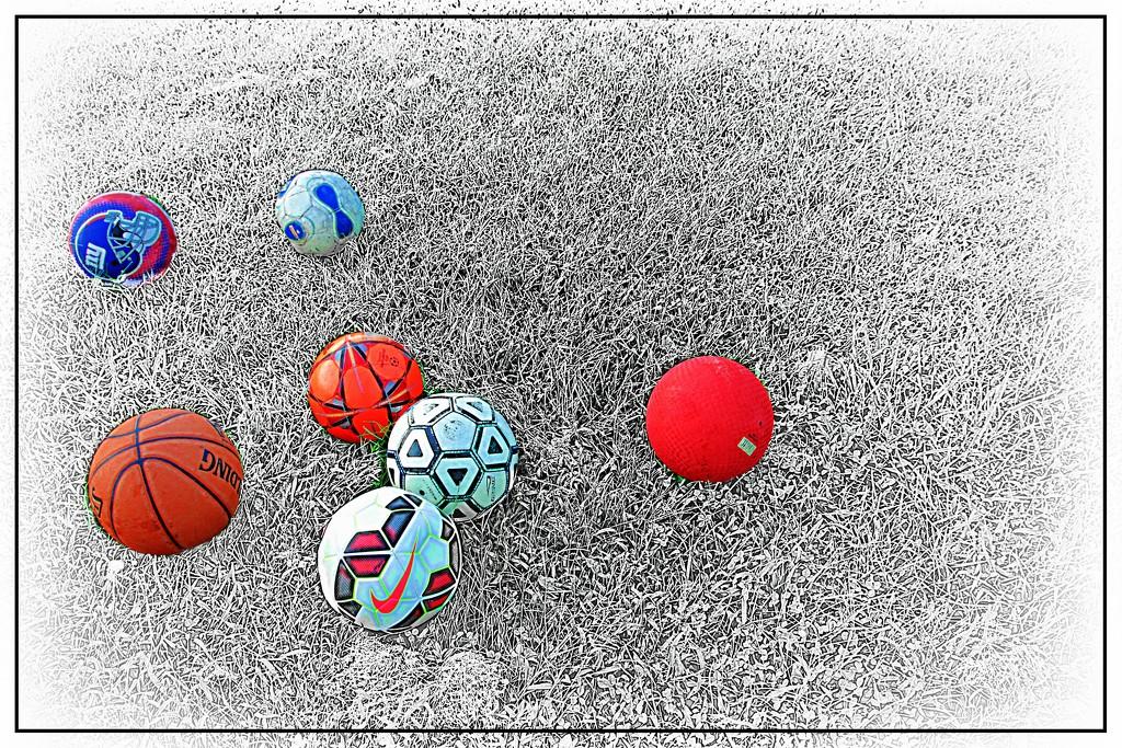 Havin' a Ball by olivetreeann