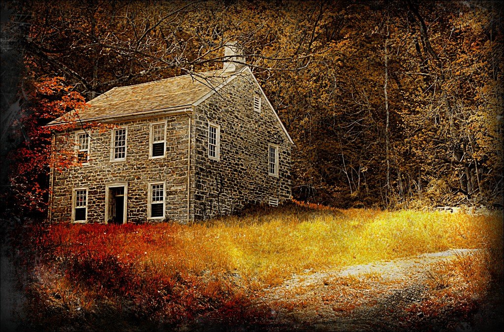 Old Farmhouse by olivetreeann
