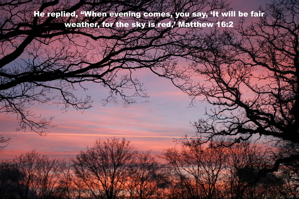 Matthew 16:2 by daffodill