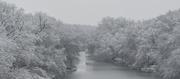 12th Jan 2019 - Snowfall over Dragoon Creek