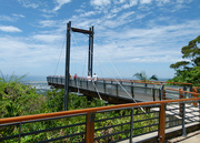 14th Jan 2019 - Sealy Lookout Forest Sky Pier