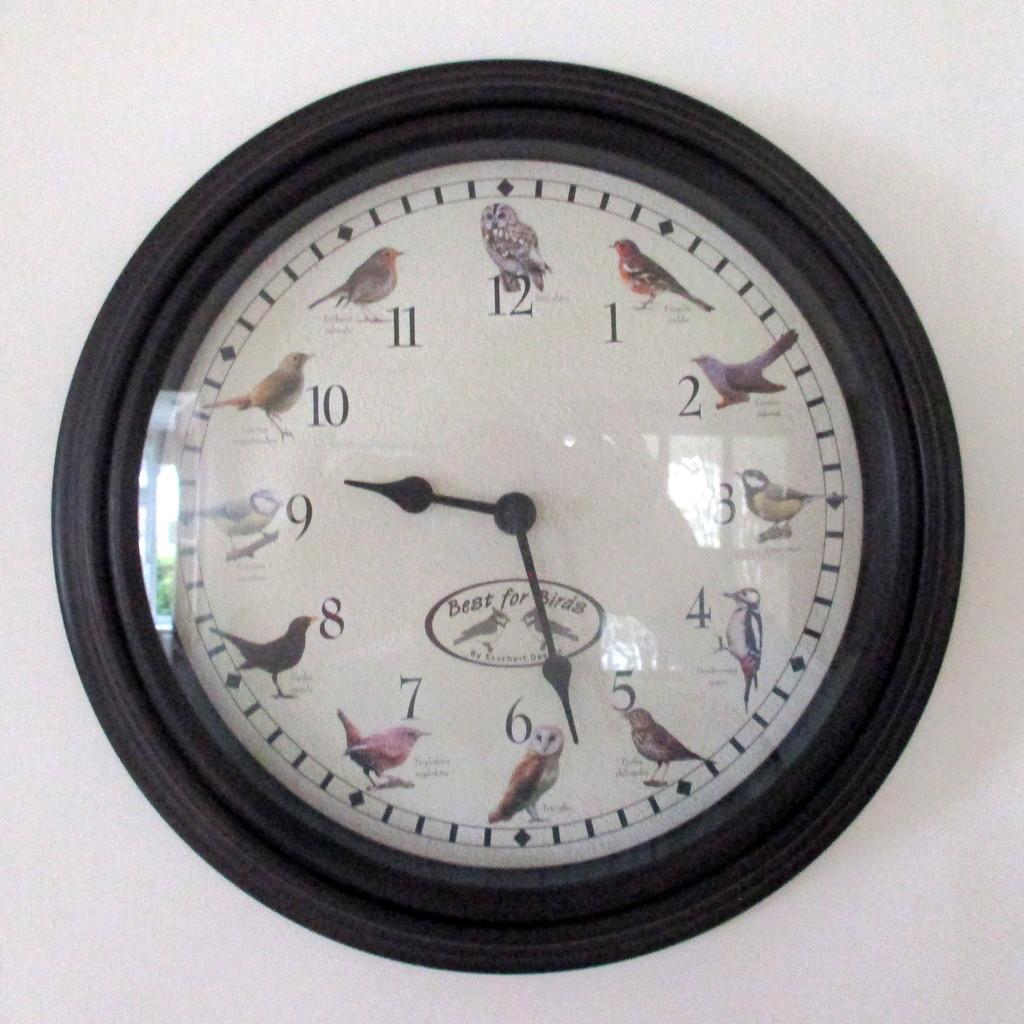 Bird Clock by g3xbm