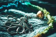 12th Jan 2019 - Aqua Seas