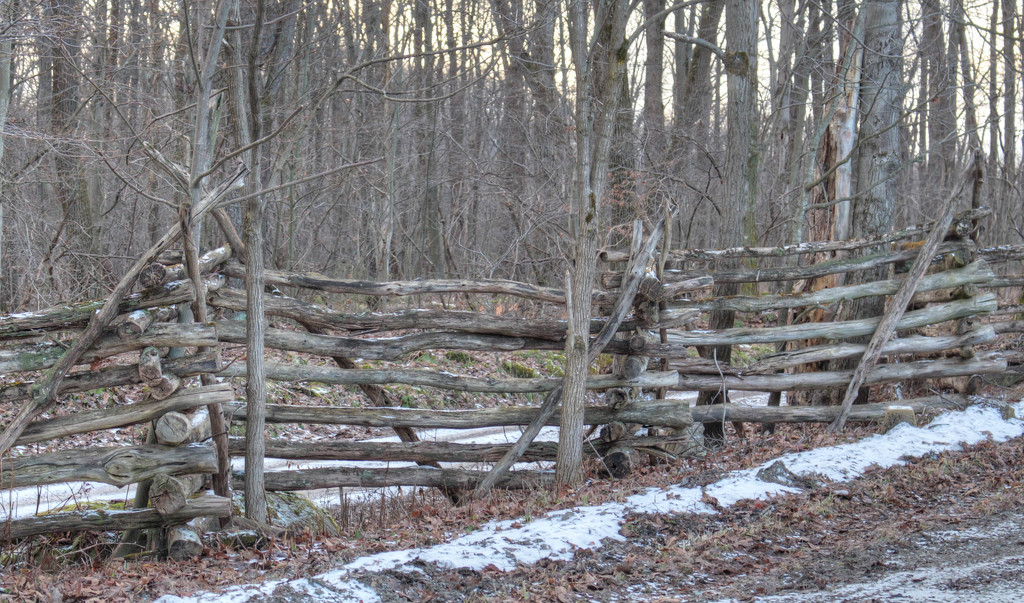 Fence on a cold gray day. by mittens