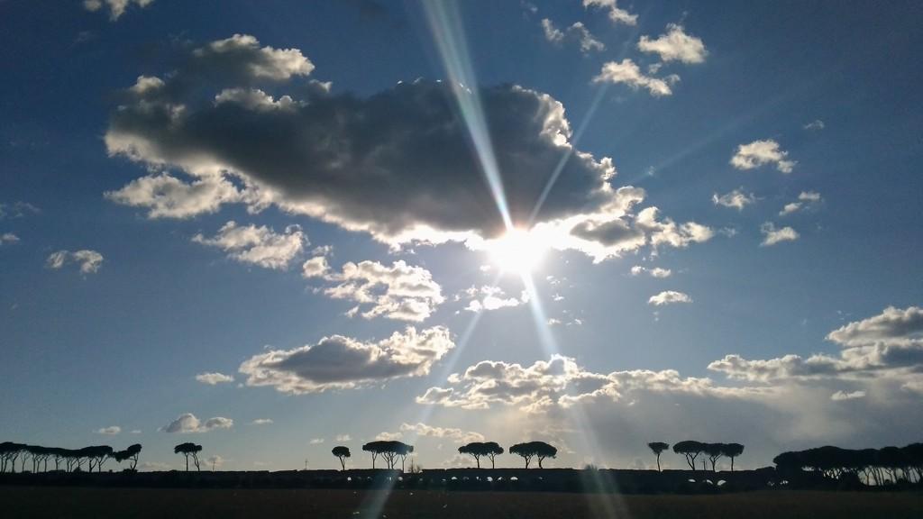 Sun rays by frappa77