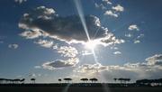 4th Jan 2019 - Sun rays