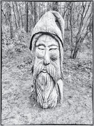 15th Jan 2019 - The wizard in the woods