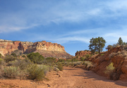 12th Sep 2018 - Capital Reef National Park