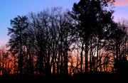 16th Jan 2019 - Winter Sunset