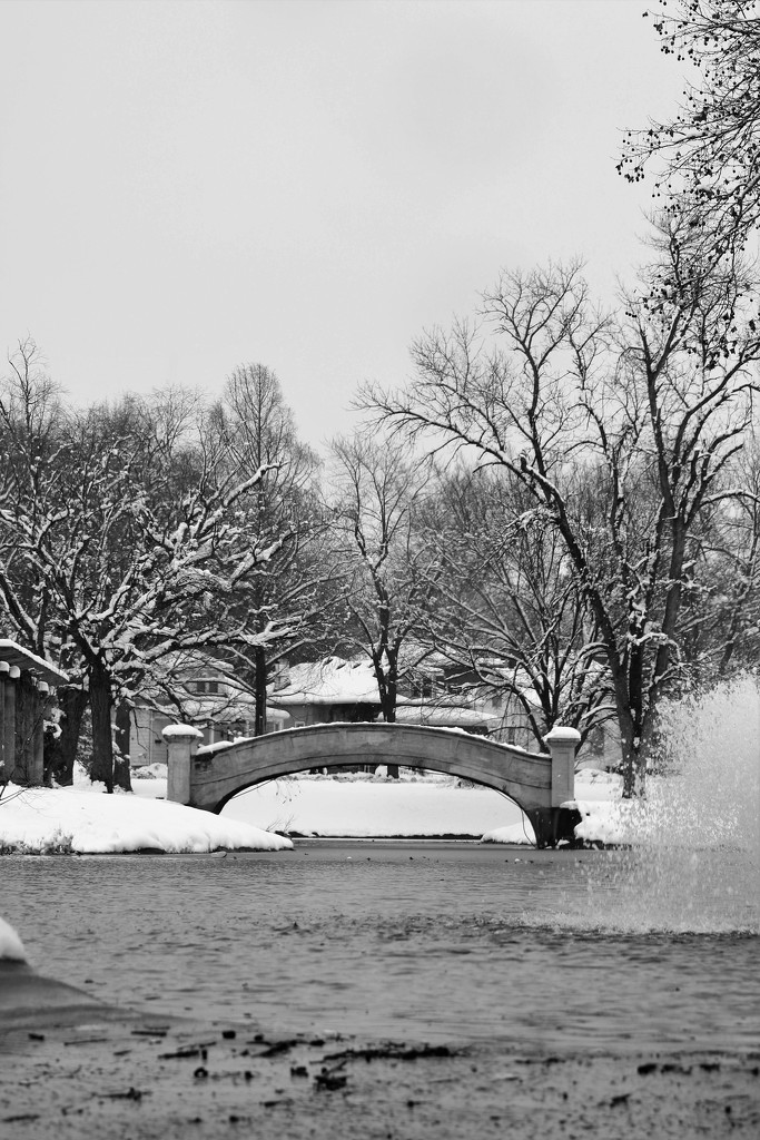 January 16: Iconic Bridge by daisymiller