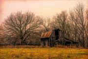 16th Jan 2019 - abandoned barn