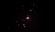 16th Jan 2019 - The Orion Nebula as seen from my back garden