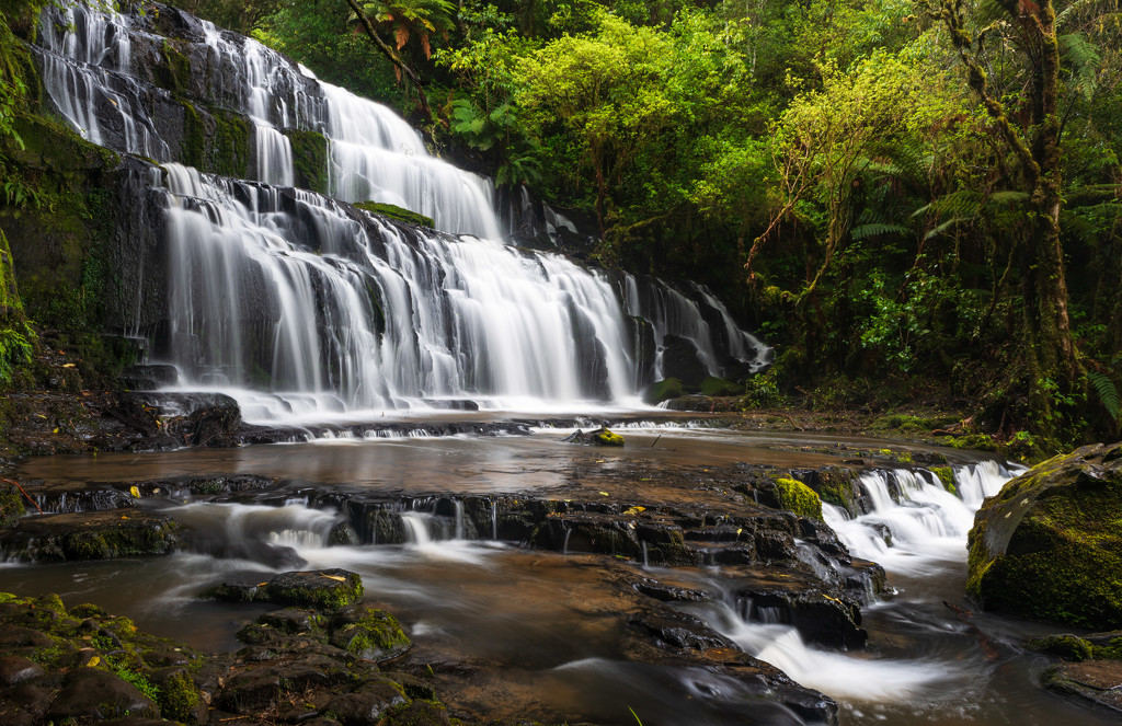 Purakaunui Falls by yaorenliu