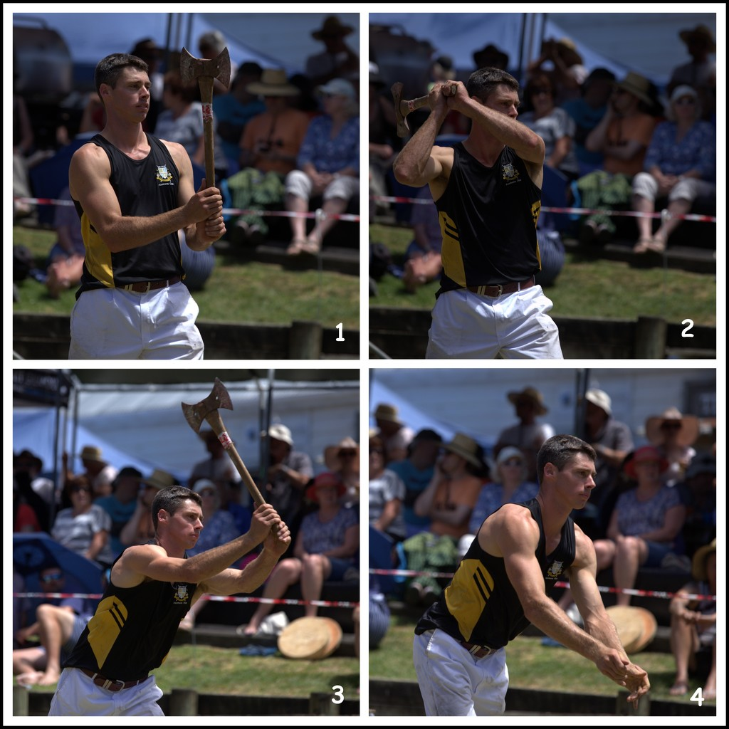 The Art of Axe Throwing by dide