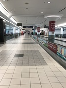 17th Jan 2019 - Toronto Pearson Airport