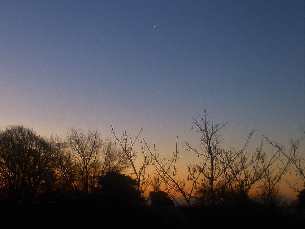 The Morning Star by 30pics4jackiesdiamond