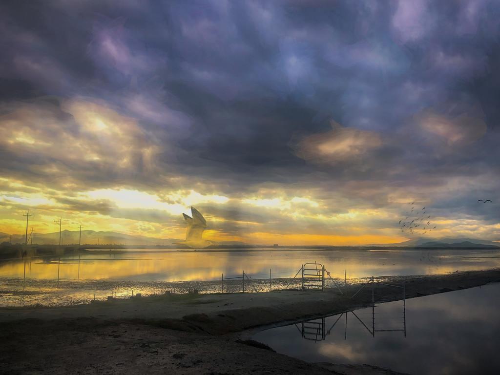 Eden Landing by mikegifford