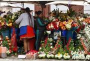 14th Jan 2019 - January2019 -14 Ecuador Cuenca 2