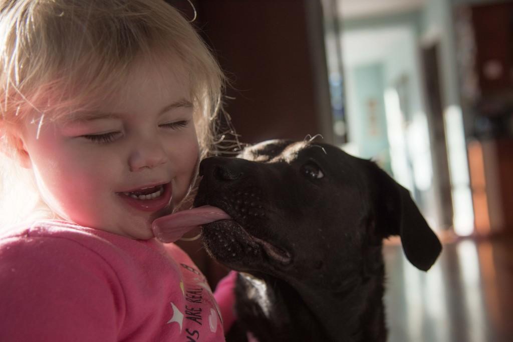 Puppy Love by dianen