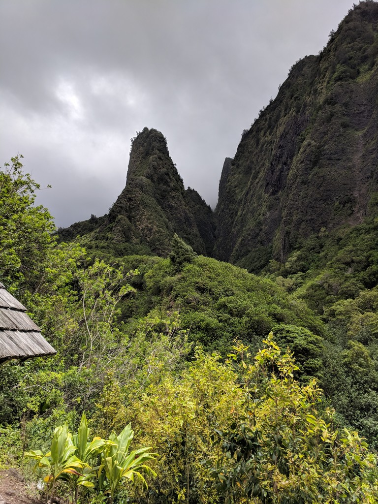 Iao Valley by bambilee