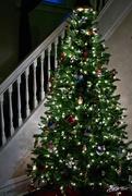 24th Dec 2018 - Twas the Night Before Christmas