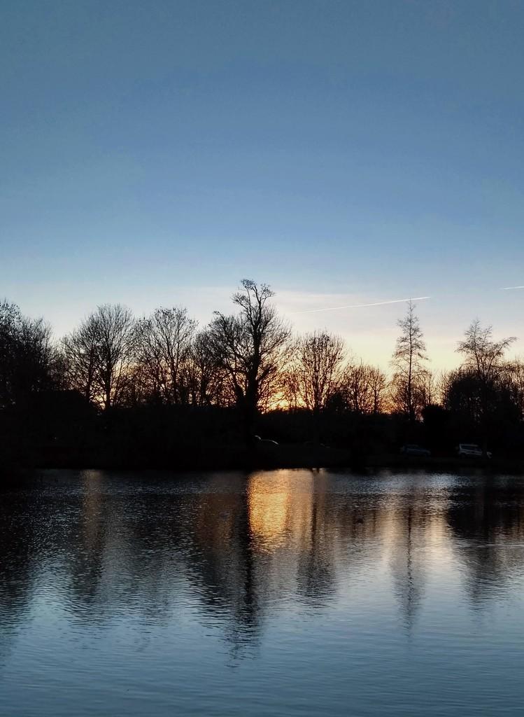Falmer Pond I by 4rky