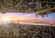 18th Jan 2019 - Upside Down