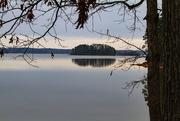 18th Jan 2019 - Clarks Hill Lake @ Mistletoe SP lake