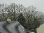 18th Jan 2019 - a bit of snow