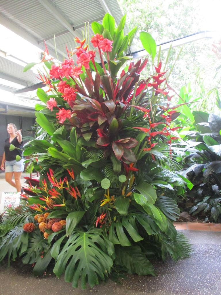 One of 2 giant floral arrangements using a variety of Ginger & Heleconia flowers by 777margo