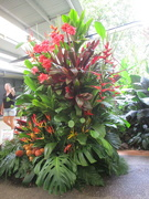 19th Jan 2019 - One of 2 giant floral arrangements using a variety of Ginger & Heleconia flowers