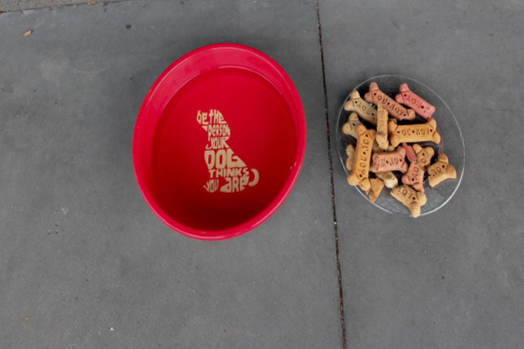 Snacks & Water by judyc57