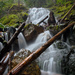 Lower Teneriffe Falls by teriyakih