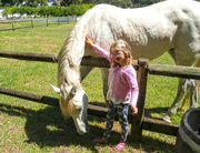 19th Jan 2019 - Emilia and Horses!