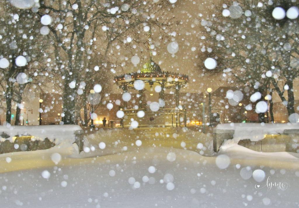 Snowstorm by lynnz