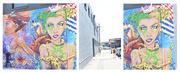 20th Jan 2019 - Get Pushed 338 - mural
