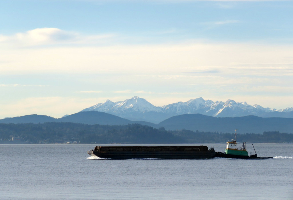 Puget Sound by seattlite