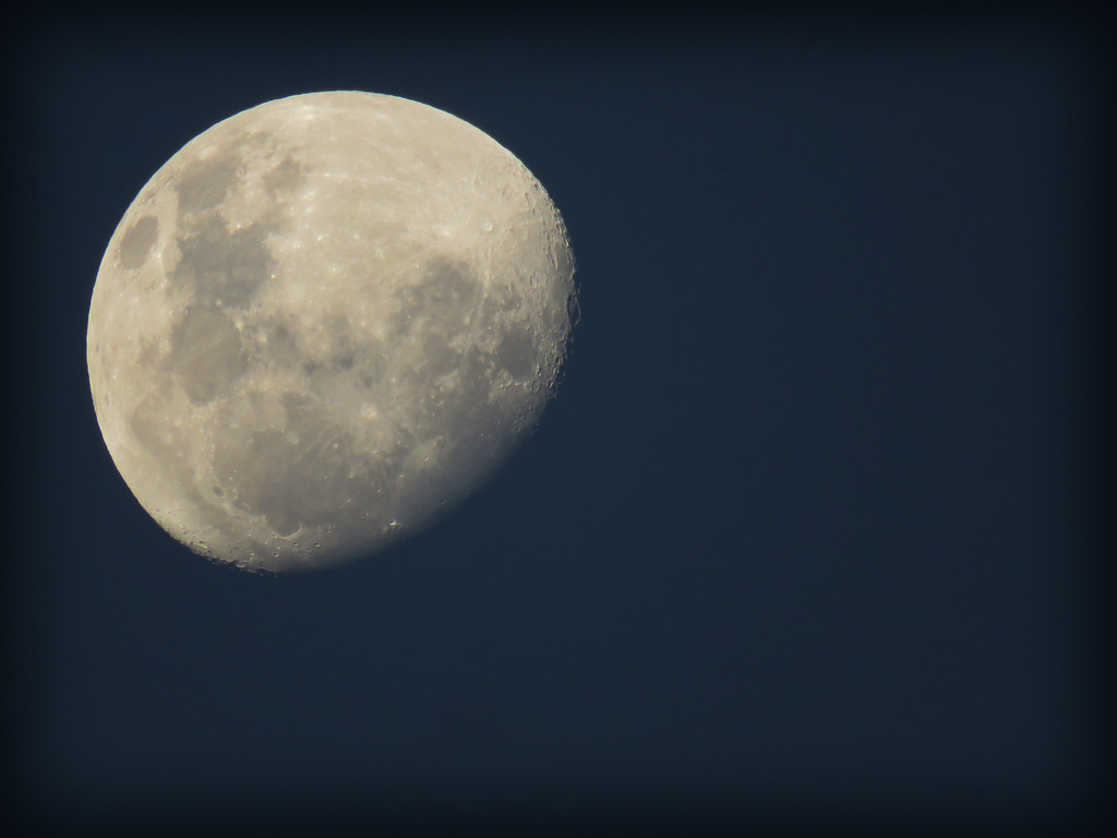 late afternoon moon by koalagardens