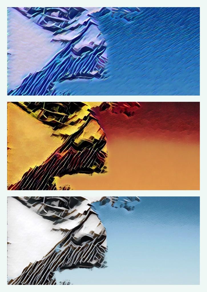 Triptych Weirdo by bankmann