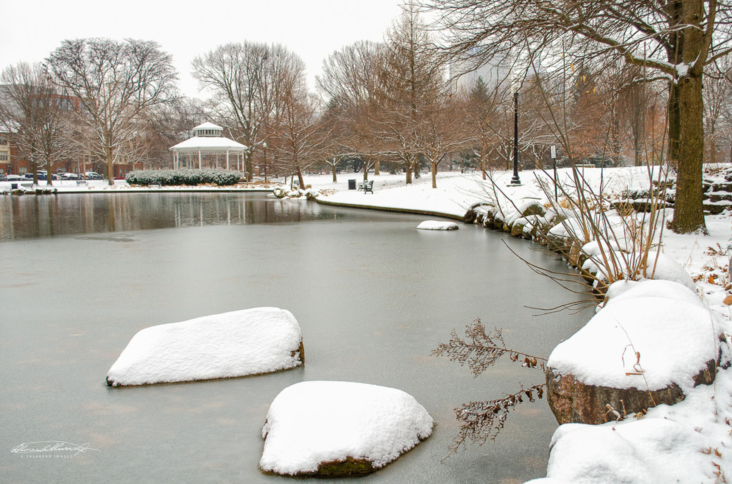 A slow freeze at Goodale Park by ggshearron
