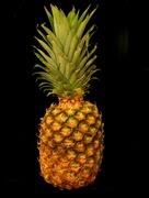 19th Jan 2019 - Pineapple